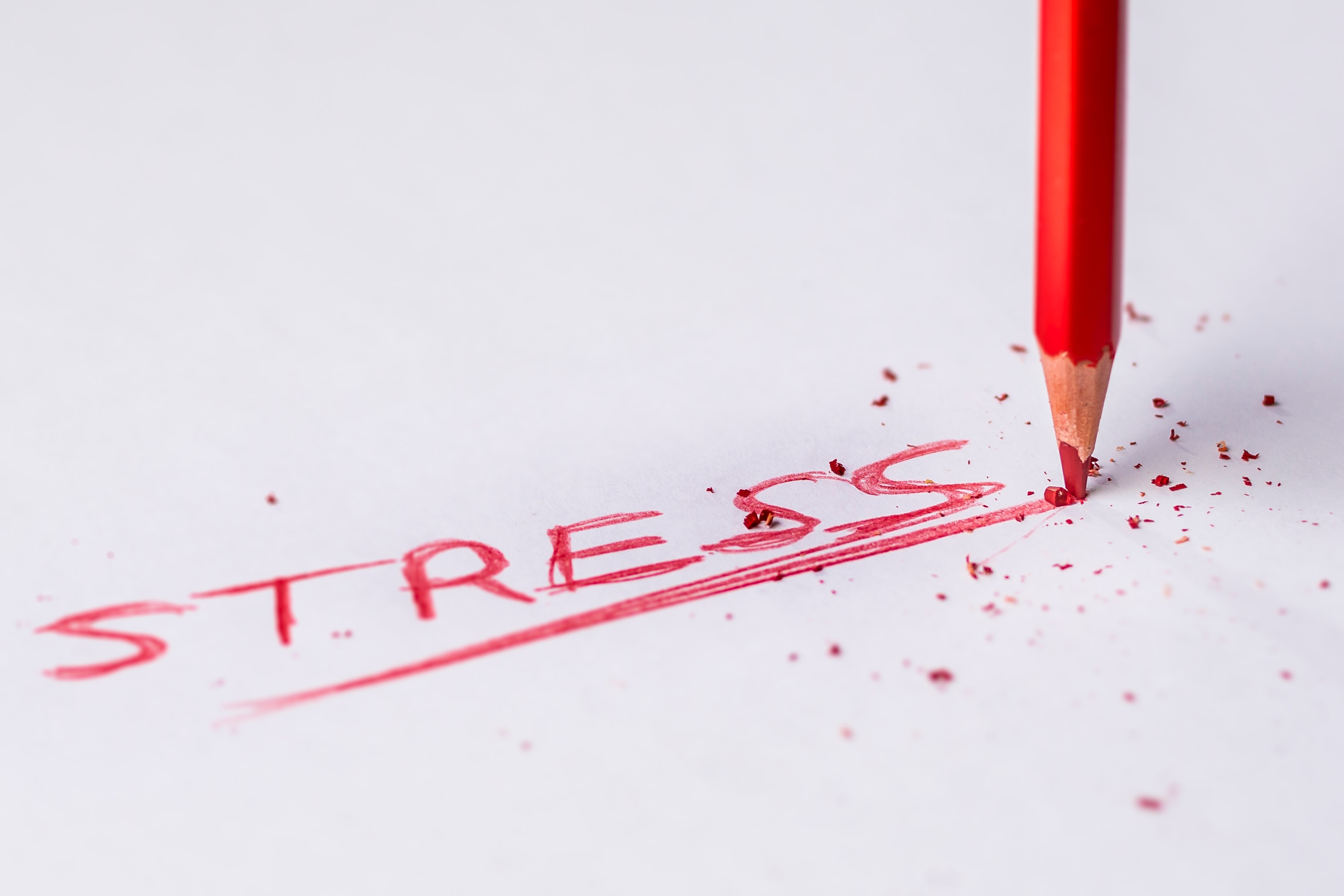 Stress: What It Does To You