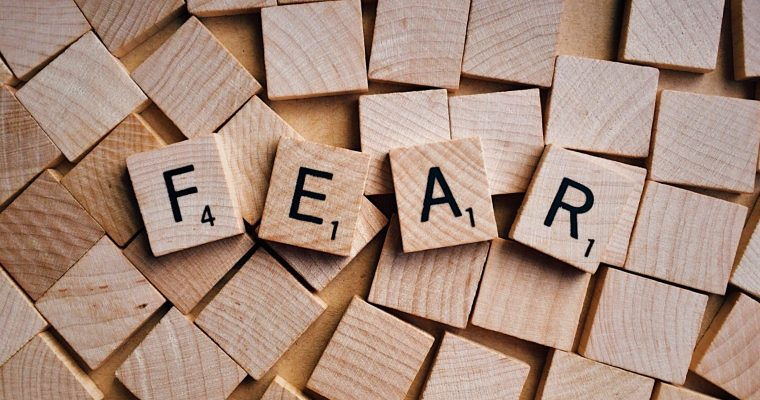 Facing Fears Seeking Solutions